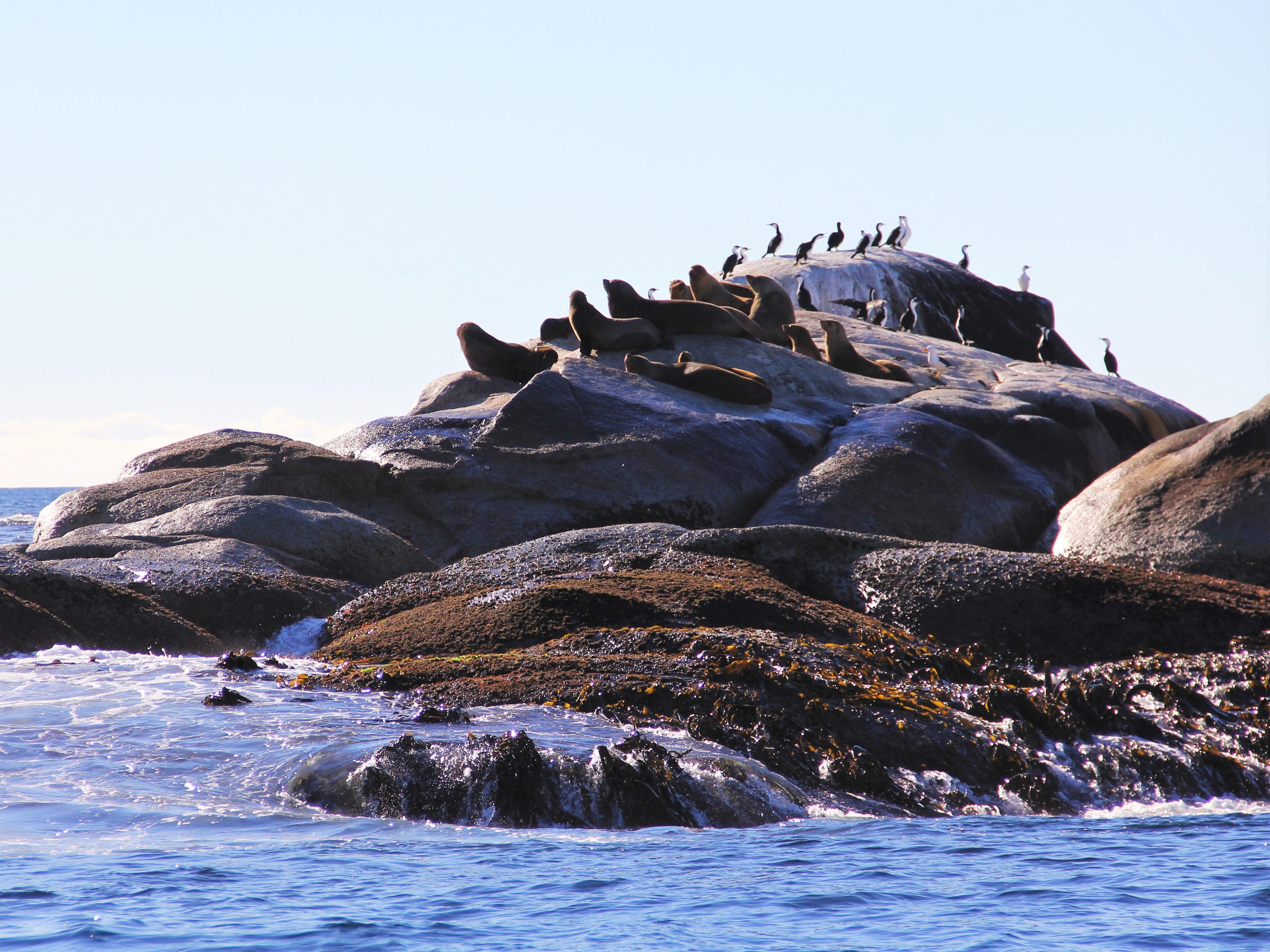 St Helens Island