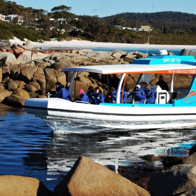 Boat Tour Binalong Bay