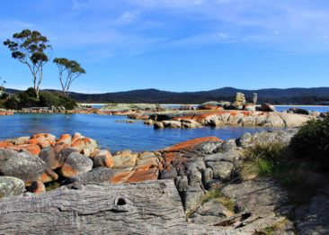 Gulch Bay of Fires Eco Tours